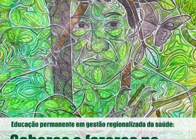 Educação permanente em gestão regionalizada da saúde: Saberes e fazeres no território do Amazonas