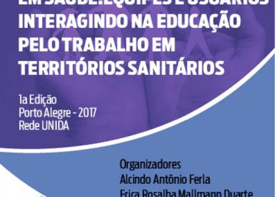 Integrando conhecimentos e práticas em saúde equipes e usuários interagindo na educação pelo trabalho em territórios sanitários